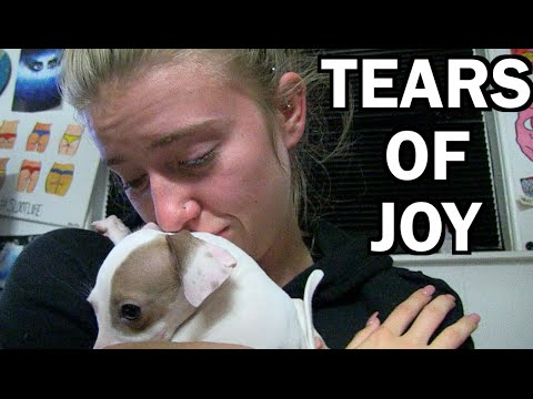SHE'S SO HAPPY SHE CRIED!! New Puppy Surprise. | JOOGSQUAD PPJT