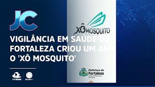 Vigilância em saúde de Fortaleza criou um App, o 'Xô Mosquito', para receber denúncias
