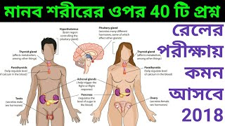 Railway Group D Life Science Human Body 40 Questions | রেলের বিজ্ঞানের মানব দেহের 40 টি প্রশ্ন