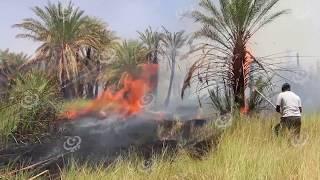 نتيحة الاعدادية ليبيا