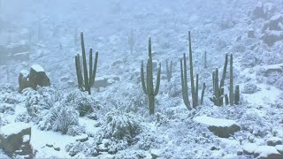 Snow blankets the desert in north Scottsdale
