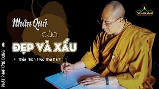 Nhân Quả Của Đẹp Và Xấu?   Thầy Thích Trúc Thái Minh