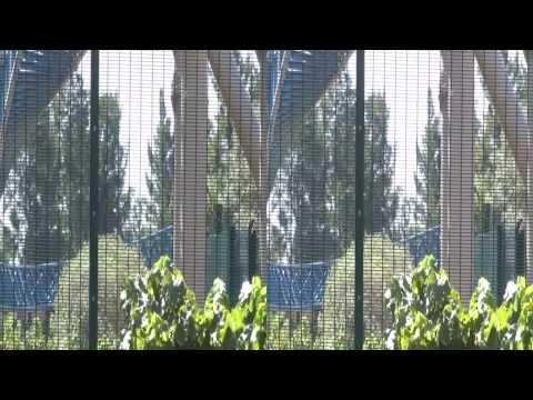 Furious Baco at Port Aventura (Salou; Spain; 3D)