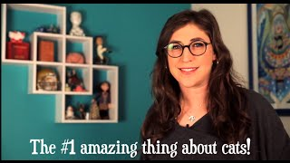 5 Amazing Things About Cats! || Mayim Bialik