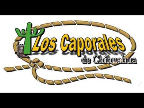 Los Caporales De chihuahua La Pico Blanco Y Los Mendoza