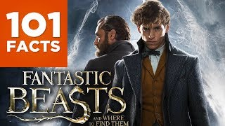 101 Facts About Fantastic Beasts And Where To Find Them