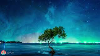 Gentle Meditation Music, Soothing Sleep Music, Calming Meditation, Meditation Relax Music #129