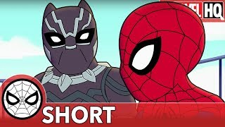 """We Need Spidey & Black Panther Right MEOW! 