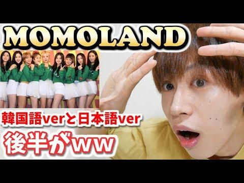 【MOMOLAND】 韓国語と日本語の歌詞比較したら凄かったww