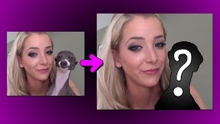 FIXING JENNA MARBLES' GARBAGE DOGS
