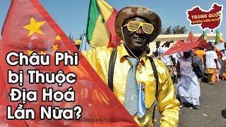Sao Lại Nói Châu Phi bị Thuộc Địa Hoá Lần Nữa? | Trung Quốc Không Kiểm Duyệt