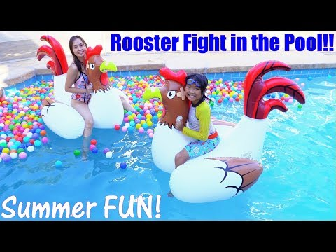 Fun Family Swimming Pool Party Fun Pool Playtime With Kids Rooster Fight In The Pool Xem