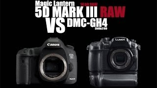 Canon 5D Mark III RAW VS Panasonic GH4 (Which one is better?)