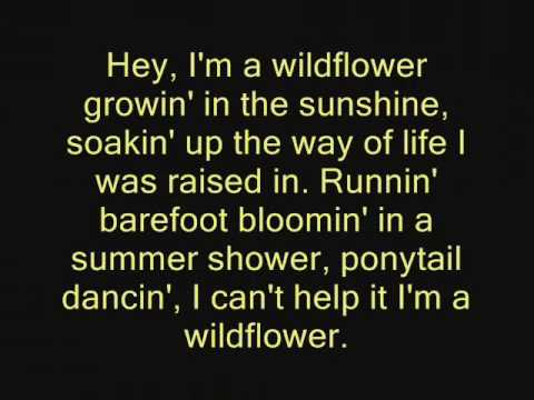 The JaneDear Girls- Wildflower lyrics