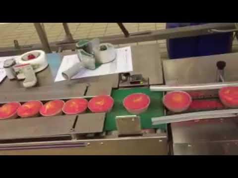 Confezionamento Merendine/HFFS mini cakes