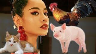 Từ Hôm Nay (Feel Like Ooh) | Ò ó o | Chi Pu ft. Trang Trại | Mix by Pam Pam