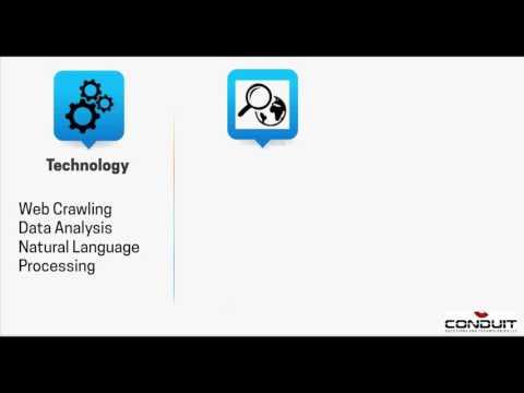 Online Reputation Management Services - Social Throb