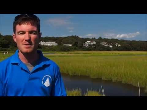 salt marsh outreach