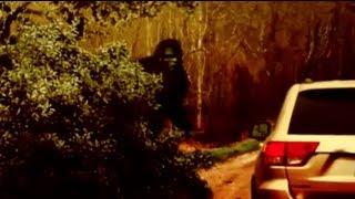 """Finding Bigfoot: Season 3 Episode 2 """"Mother Bigfoot"""""""