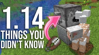 1.14 Minecraft Things You Didn't Know