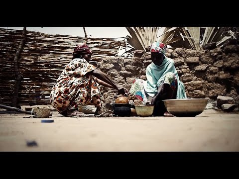 Lives Depend On It: Fighting Malaria In Chad - Smashpipe Nonprofit