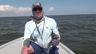 Brand-new South Louisiana honey hole loaded with speckled trout | Video