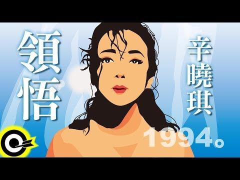 辛曉琪-領悟 (官方完整版Comix)(HD)