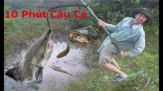 Chỉ 10 Phút Câu Cá Giải Trí .Bắt Được Cá Trê Khổng Lồ .Catch Fish In Cambodia .Với Mồi Câu Cá Gia Tr