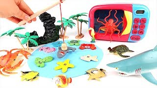 Let Fishing Sea Animals wooden puzzle! Transform Real Sea Animal by Putting Microwave Oven.