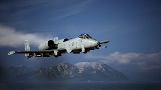 Aircraft Profile: A-10 preview image