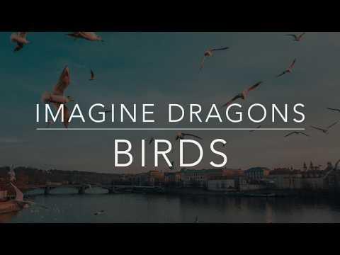 Imagine Dragons - Birds (Lyrics/Tradução/Legendado)(HQ)