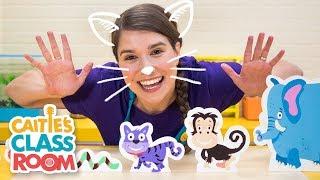 Caitie's Classroom Live - Animals!