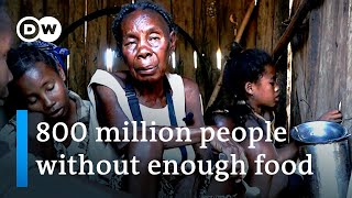 Climate change fuels drought, starvation worldwide | DW News