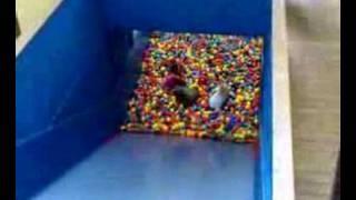 Ball pool slide
