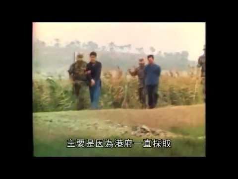 1980年香港大事回顧(偷渡問題,人口管理政策)