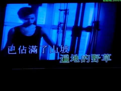 甜思蕬Candy - 女人花 (唱K) (原唱 梅艷芳) (Eb)