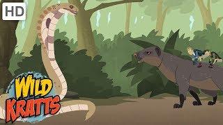 Wild Kratts - How to Take Care of Wild Animals