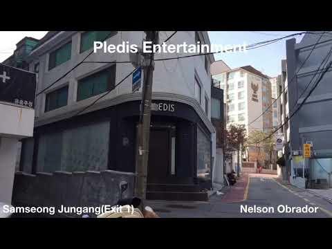 Pledis Entertainment (address)