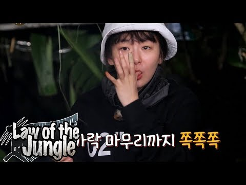 Seul Gi is The Only Peaceful One As Always! [Law of the Jungle Ep 322]