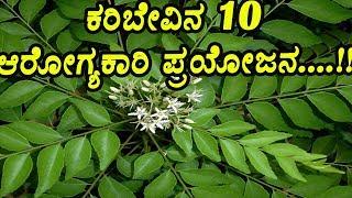 ಕರಿಬೇವಿನ 10 ಆರೋಗ್ಯಕಾರಿ ಪ್ರಯೋಜನ....!!   Top 10 Health Benefits of Curry Leaves  