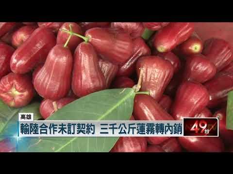 禁鳳梨下一波? 三千公斤「六龜蓮霧」 外銷中國喊卡