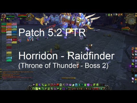 Horridon Throne of Thunder Boss 2) Raid Video Mists of Pandaria