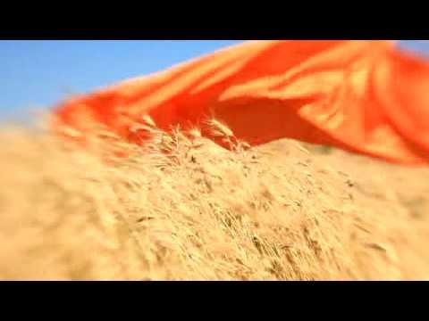 VESNA - I Love You (trailer)