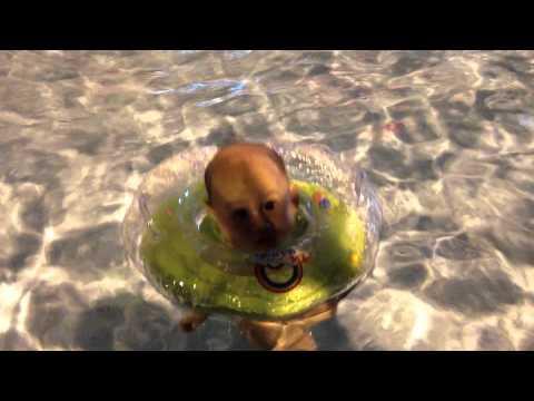 Baby Idzhar Khaliq @ 4 months - MamboBaby Swimming