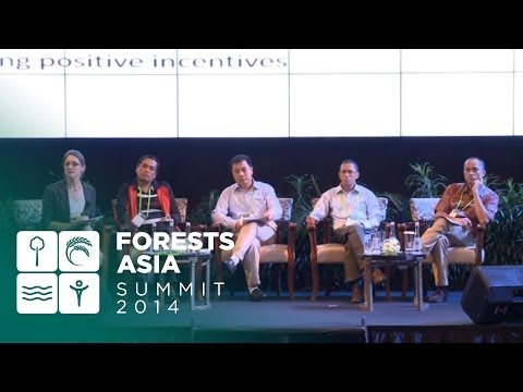 Forests Asia 2014 – Day 1 Discussion Forum, What is the fairest of them all?