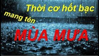 Những ý tưởng kinh doanh kiếm bộn tiền mùa mưa