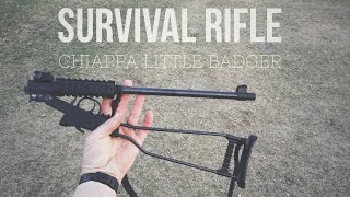 Chiappa Little Badger - Survival Gun Review - Day 16