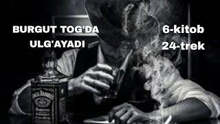BURGUT TOG'DA ULG'AYADI 6-kitob 24-trek [Nuriddin Ismoilov] [Detektiv roman]