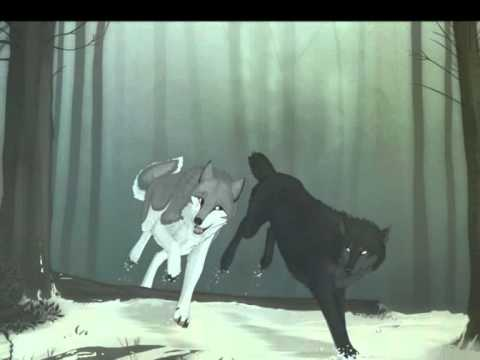 Wolves in Love Wallpapers - WallpaperSafari  Two Wolves In Love Anime