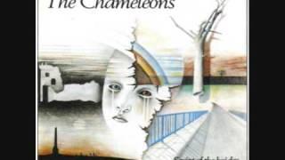 The Chameleons - Pleasure And Pain